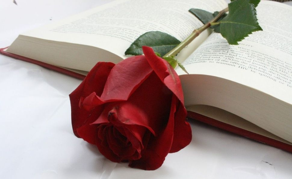 https://libros.economiadigital.es/wp-content/uploads/2019/04/rose-flower-book-red-words-1084355_15_970x597-1.jpeg